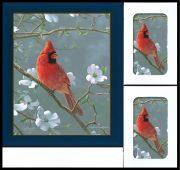 Cardinal Box Set