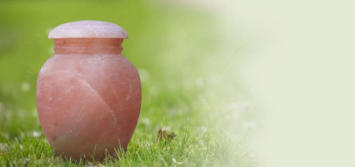 Biodegradable, earthly friendly cremation urn